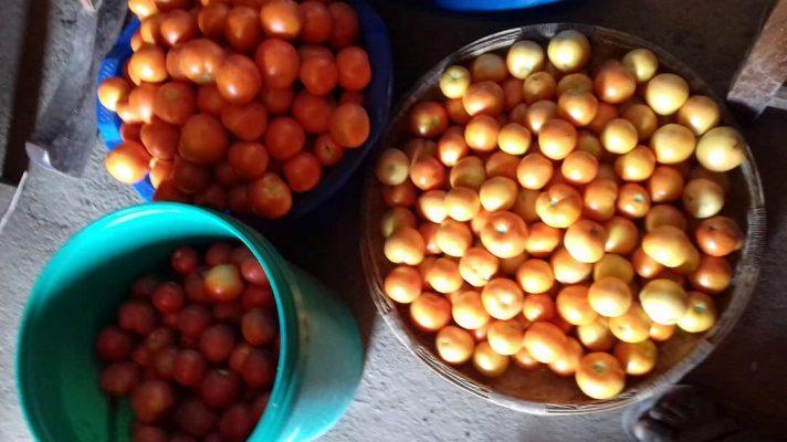Emmers tomaten