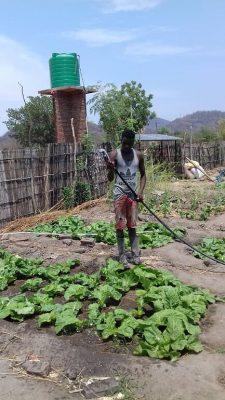 Jongen die in de tuin werkt